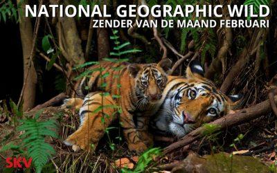 National Geographic WILD zender van de maand februari 2019 op kanaal 999