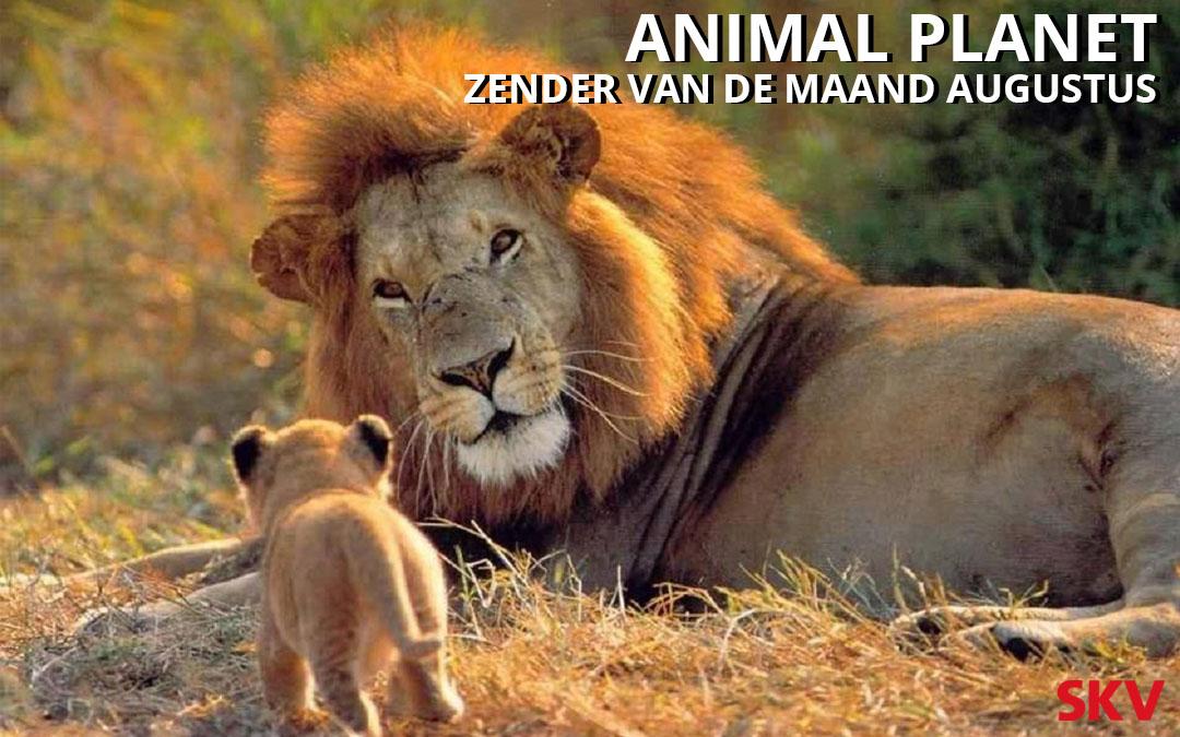 Animal Planet zender van de maand augustus 2019 op kanaal 999